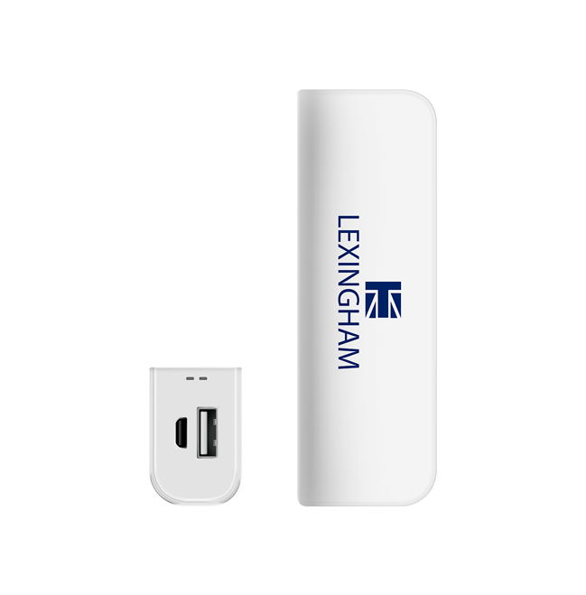 High quality 2600mAh portable USB power bank 5900 lexingham